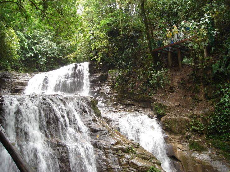 Veragua Veragua Rainforest Research amp Adventure Park Go Visit Costa Rica