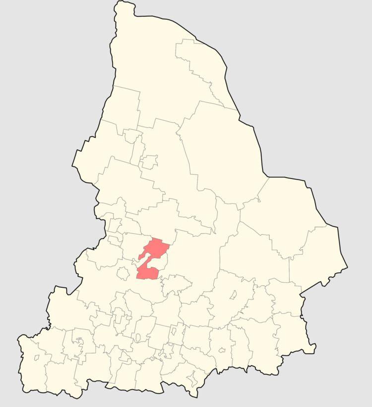 Verkhnesaldinsky District