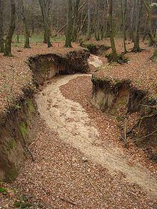 Verlorenes Wasser httpsuploadwikimediaorgwikipediacommonsthu