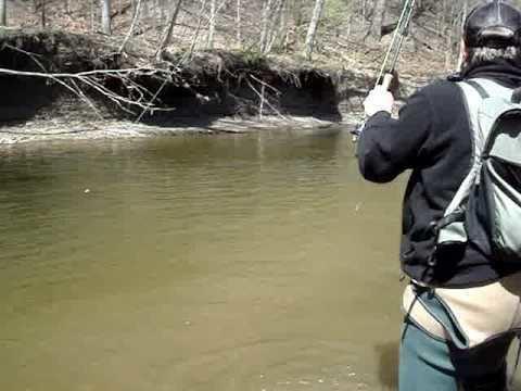 Vermilion River (Ohio) httpsiytimgcomvi461ube0Vbd0hqdefaultjpg