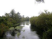 Vesle httpsuploadwikimediaorgwikipediacommonsthu
