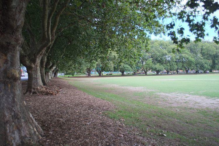 Victoria Park, Auckland