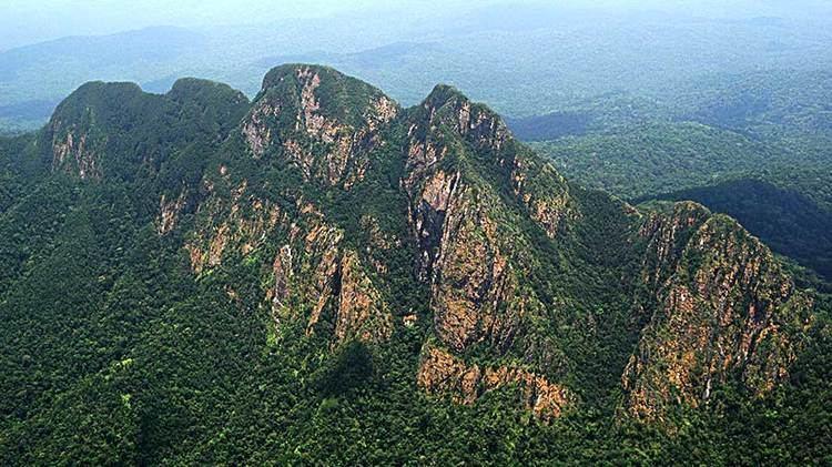 Victoria Peak (Belize) wwwbelizeaudubonorgwpcontentuploads201402b