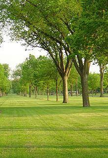 Victory Memorial Parkway httpsuploadwikimediaorgwikipediacommonsthu