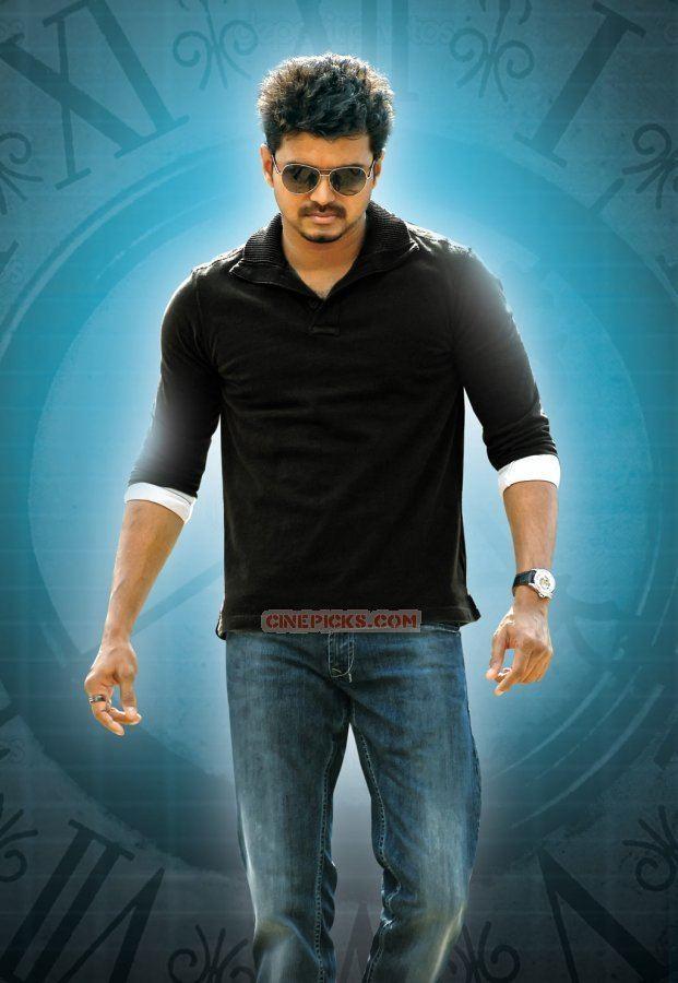 Vijay (actor) Actor vijay stills 4405 Tamil Actor Vijay Stills and