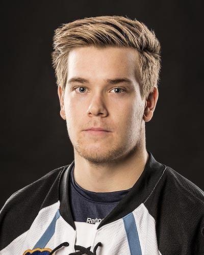 Viktor Arvidsson TheAHLcom The American Hockey League