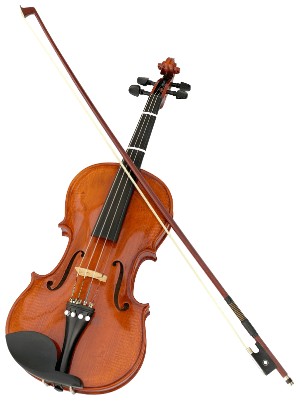 Violin RDV