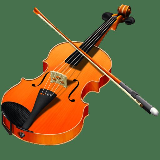 Violin VeenaVani Violin