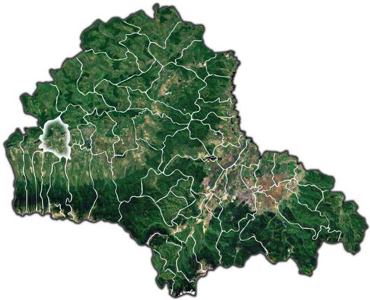 Voila, Brașov