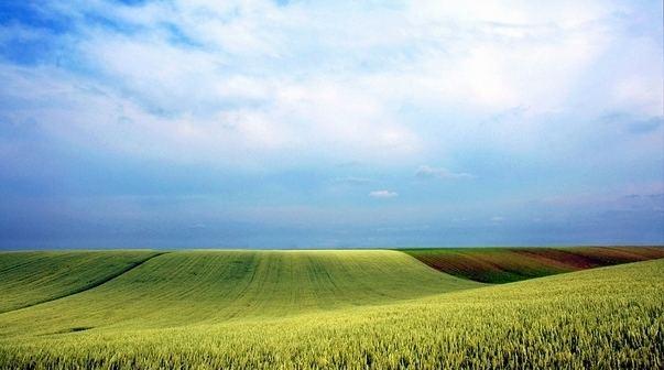 Vojvodina Beautiful Landscapes of Vojvodina