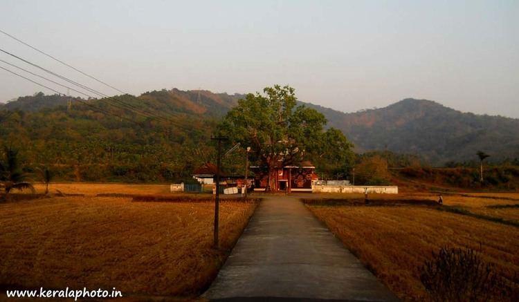 Wadakkancherry Beautiful Landscapes of Wadakkancherry