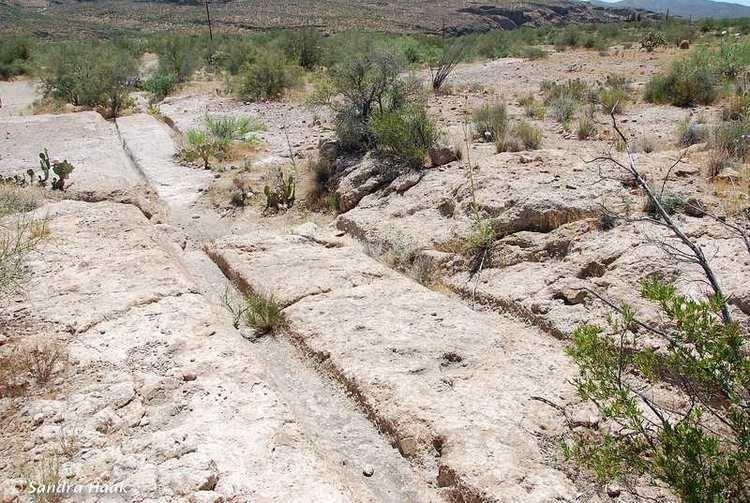 Wagon Tracks Arizona