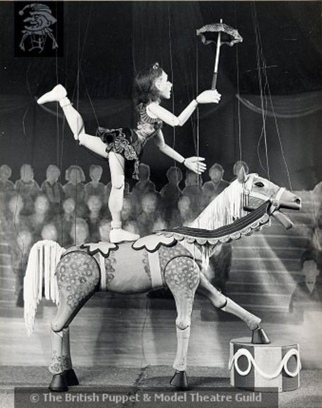 Waldo Lanchester Jubiliee the Circus Horse Waldo Lanchester 1930s 00012 on eHive