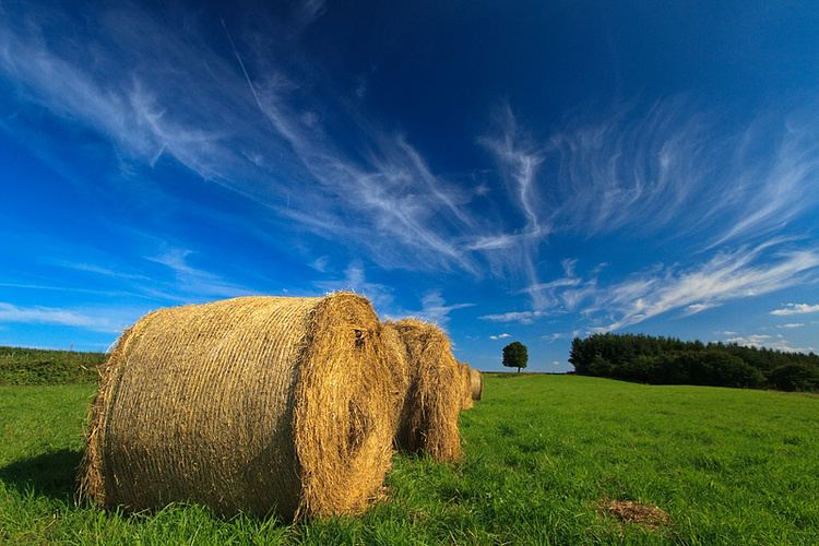 Wallonia Beautiful Landscapes of Wallonia