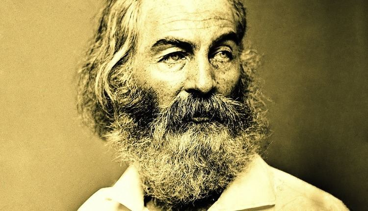 Walt Whitman Who Owns Walt Whitman The Airship