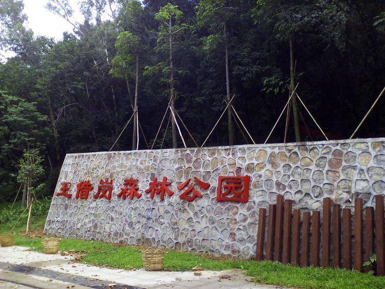 Wangjiegang Park