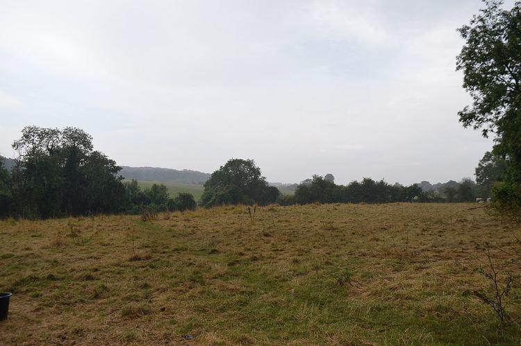 Wansford Pasture