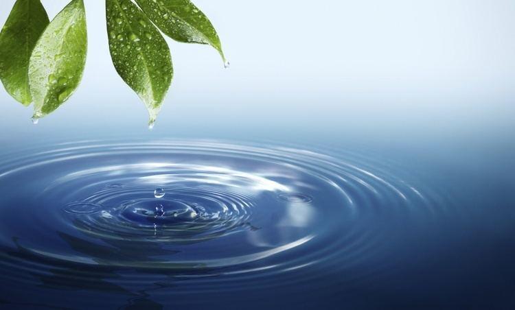Water shswstaticcomgifwaterlifecropjpg