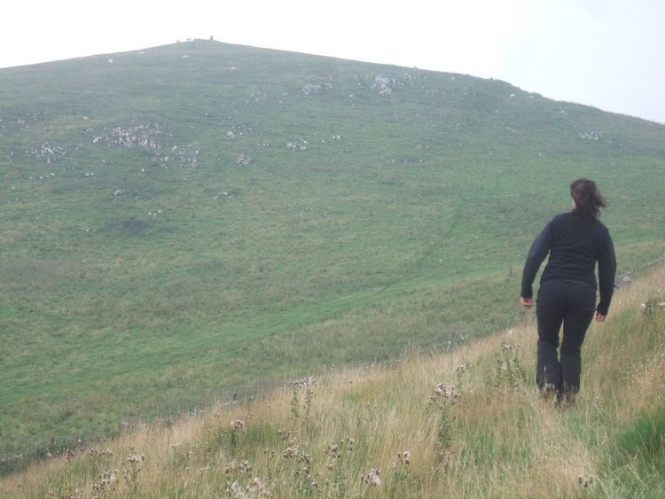 Weaver Hills Here There and an Attempt on Everywhere The Cowpat Walks 7