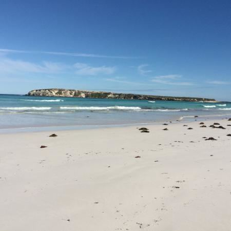 Wedge Island (Western Australia) httpsmediacdntripadvisorcommediaphotos08