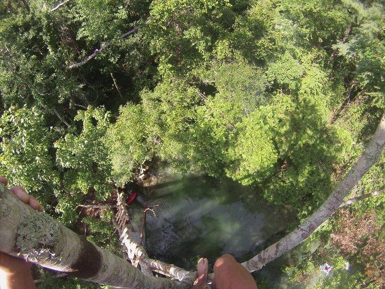 Weeki Wachee River httpsiytimgcomvihRKyBFltYmaxresdefaultjpg