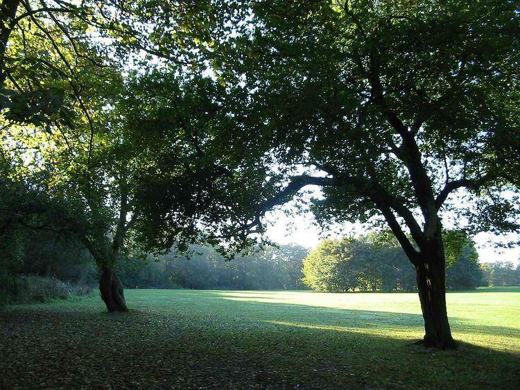 Weelsby Woods