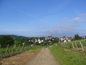 Weiler bei Bingen httpsuploadwikimediaorgwikipediacommonsthu