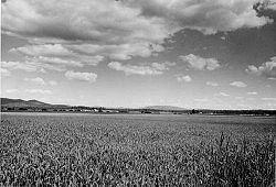 Weippe Prairie Weippe Prairie Wikipedia