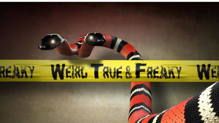 Weird, True & Freaky weirdtrueandfreaky Animal Planet