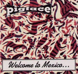 Welcome to Mexico... Asshole httpsuploadwikimediaorgwikipediaen449Wel