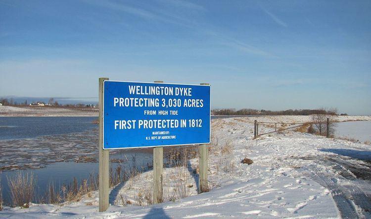 Wellington Dyke