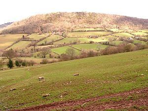 Wenallt Hill httpsuploadwikimediaorgwikipediacommonsthu