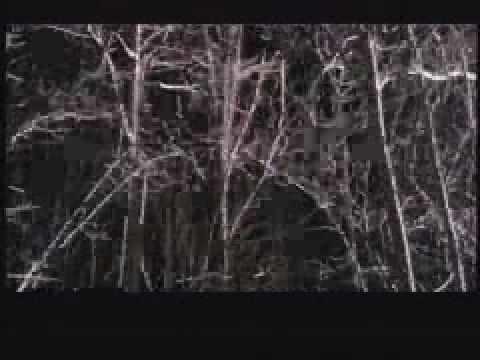 Wendigo Trailer 2001 YouTube