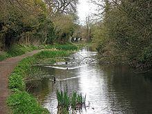 Wendover Arm Canal httpsuploadwikimediaorgwikipediacommonsthu