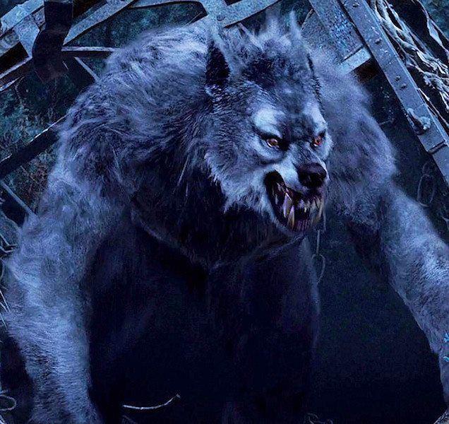 Werewolf httpssmediacacheak0pinimgcom736x27f10e