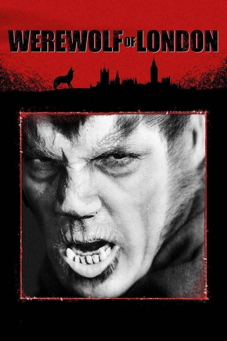 Werewolf of London wwwgstaticcomtvthumbmovieposters4763p4763p