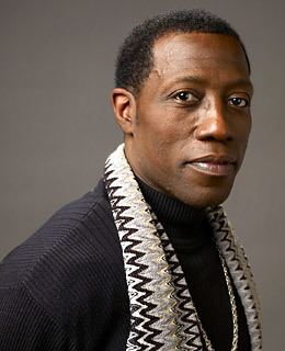 Wesley Snipes imgtimeincnettimephotoessays200910taxevade