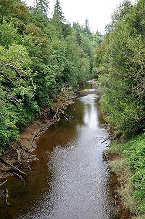 West Fork Millicoma River httpsuploadwikimediaorgwikipediacommonsthu