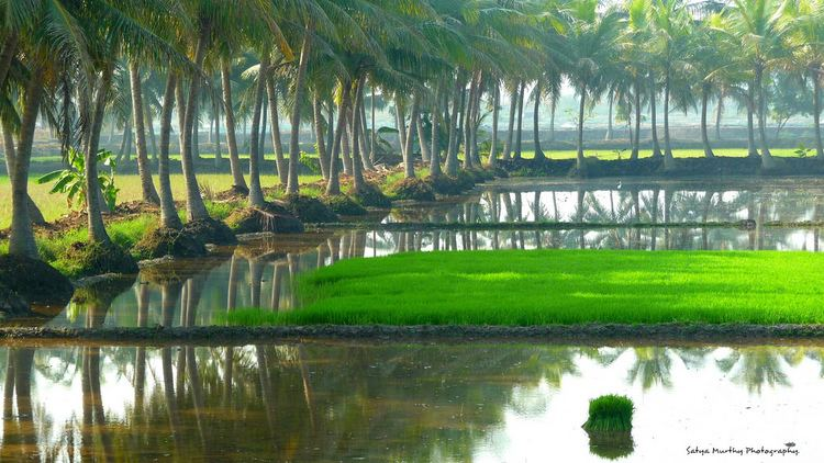West Godavari district Beautiful Landscapes of West Godavari district