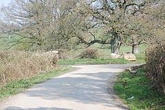 West Tisbury, Wiltshire httpsuploadwikimediaorgwikipediacommonsthu