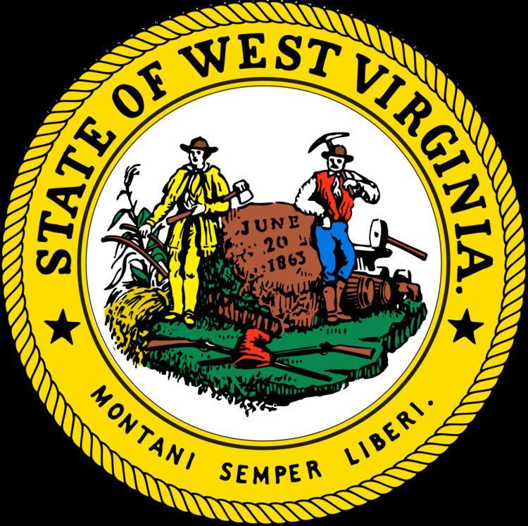 West Virginia elections, 2010