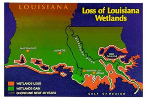 Wetlands of Louisiana Louisiana Wetlands