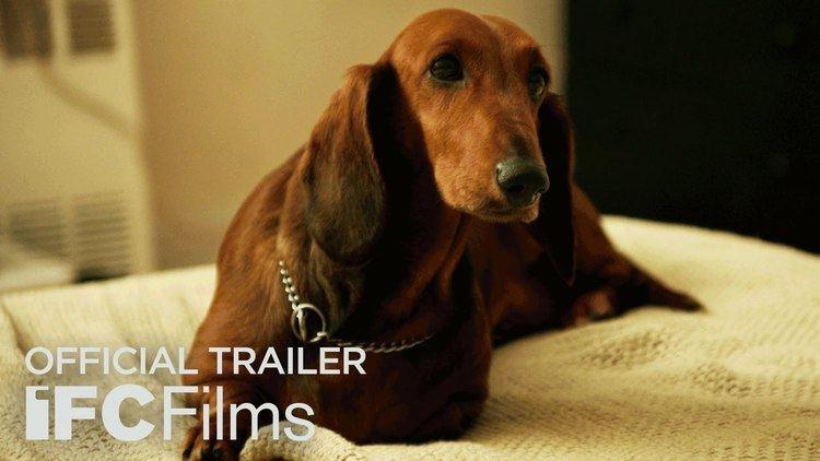 WienerDog Official Trailer I HD I IFC Films YouTube