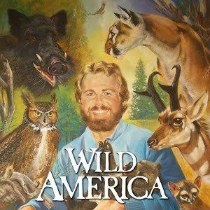 Wild America (TV series) Wild America YouTube