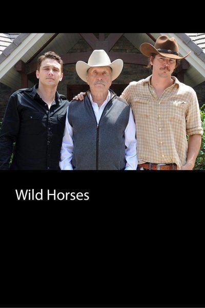 Wild Horses Movie Review Film Summary 2015 Roger Ebert