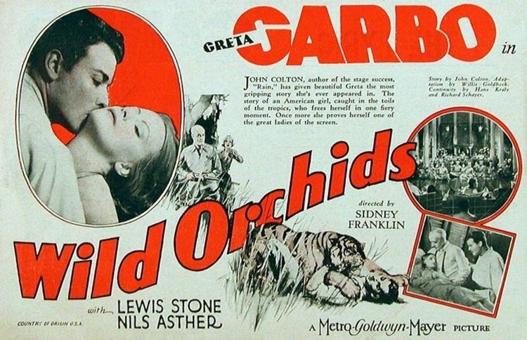 Wild Orchids 1929