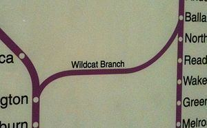 Wildcat Branch httpsuploadwikimediaorgwikipediacommonsthu