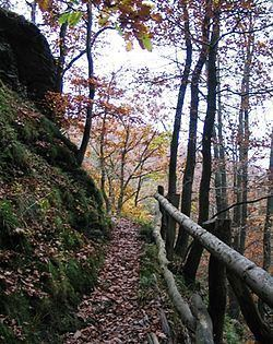 Wildnis Trail httpsuploadwikimediaorgwikipediacommonsthu