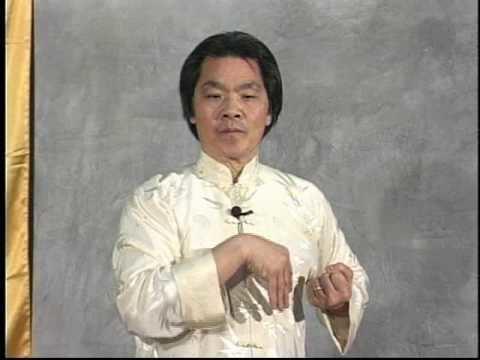 William Cheung TWC Shil Lim Tao form in slow motion Grandmaster William
