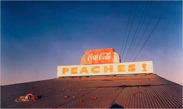 William Eggleston FullColor Images of a Changing South at the Whitney